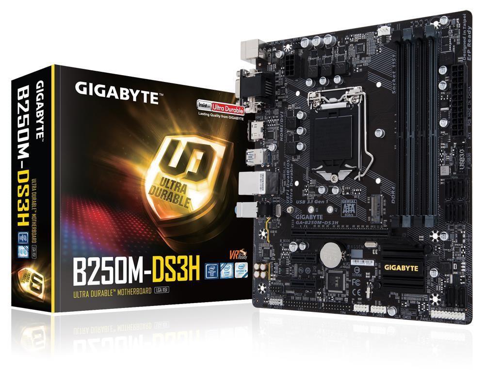 Gigabyte GA-B250M-DS3H emaplaat LGA 1151 (pesa H4) Mikro ATX Intel® B250