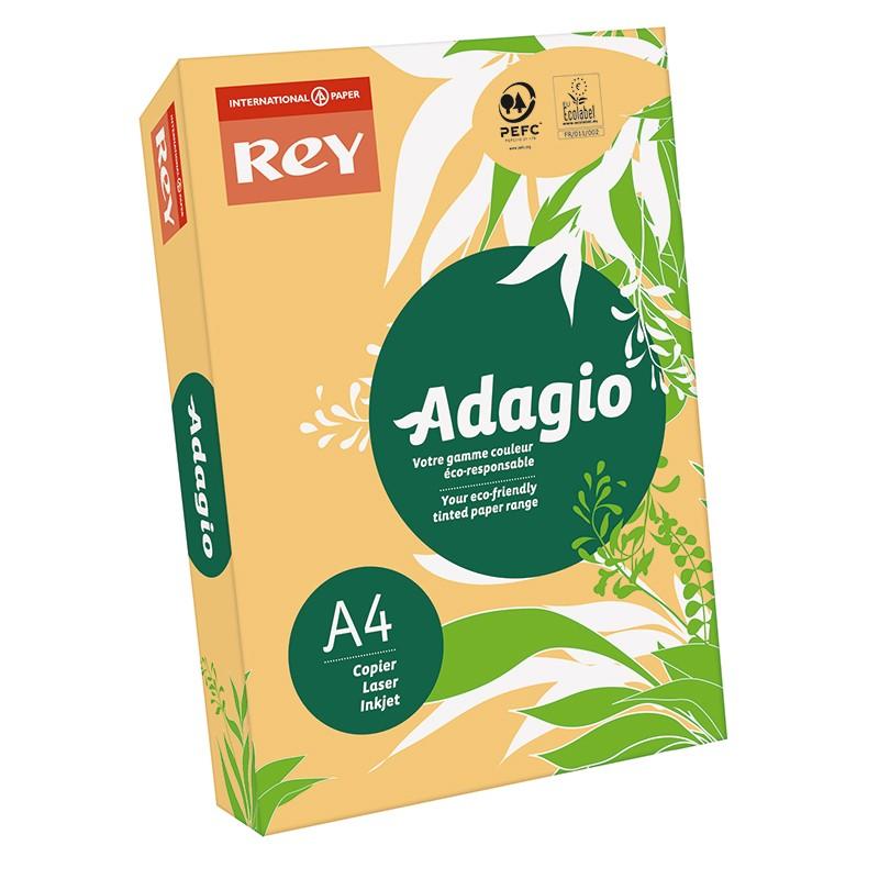 Värvipaber REY ADAGIO A4, 80g/m2, 500 lehte, seemispruun (nr.98)