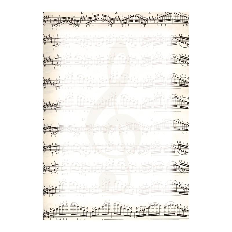 Dekoratiivpaber DYPLOMY NOTES A4, 170g/m2, 25 lehte