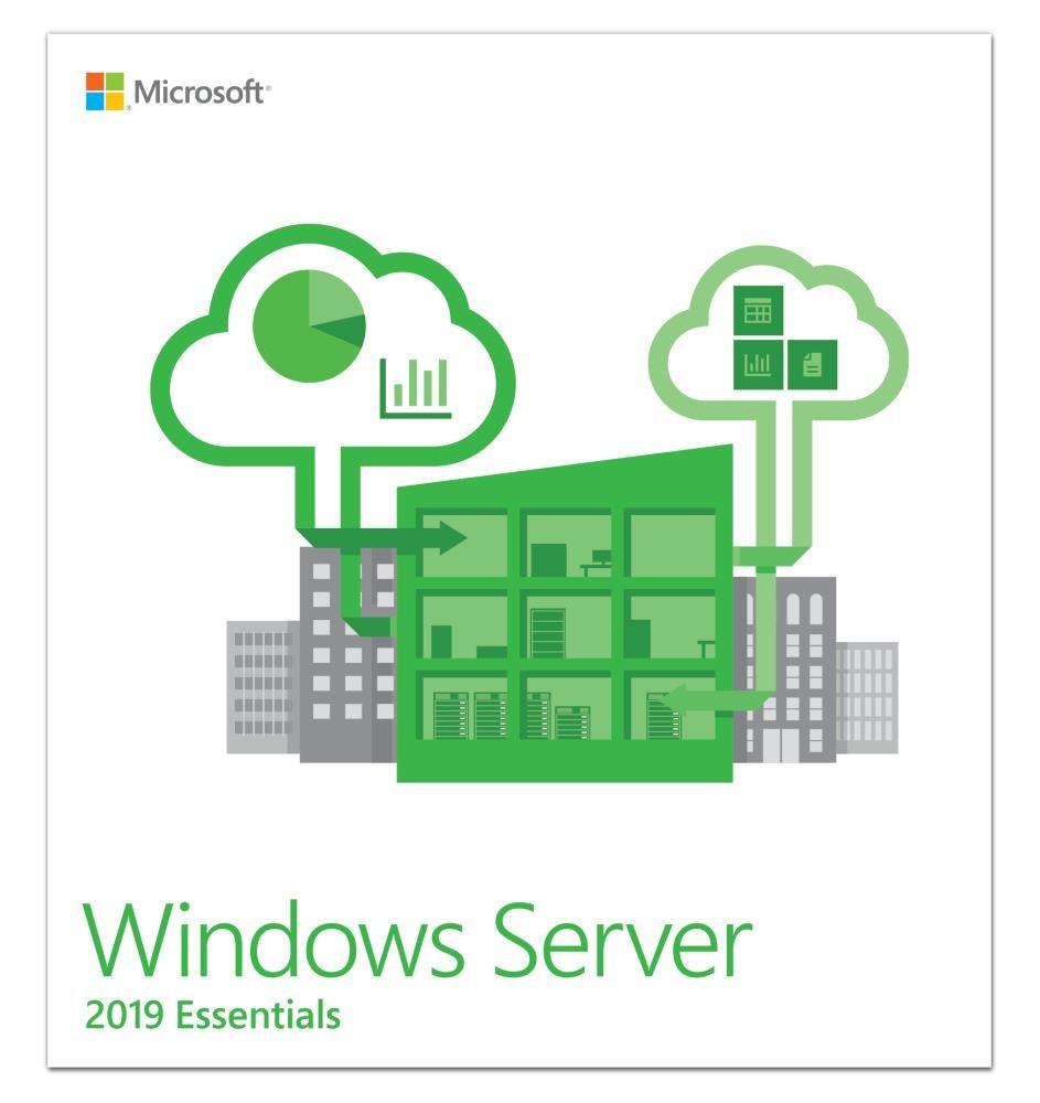 Microsoft Windows Server Essentials 2019 1 litsents(i)
