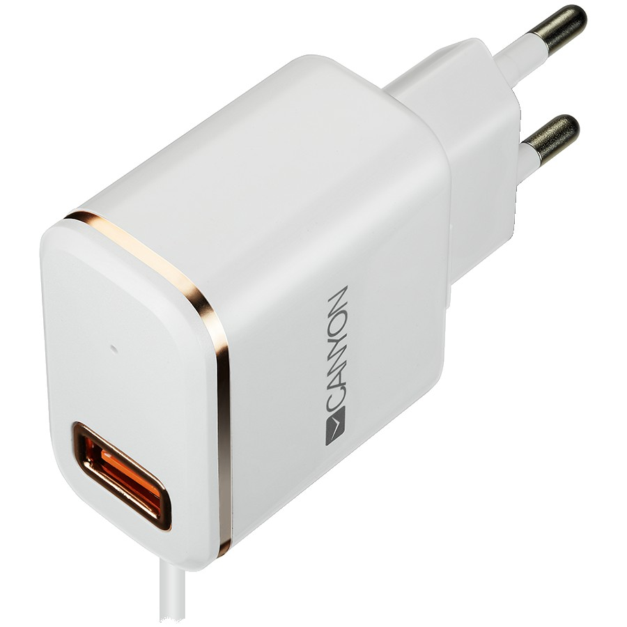 CANYON H-043 Universal 1xUSB AC charger (in wall) with over-voltage protection, plus lightning USB connector, Input 100V-240V, Output 5V-2.1A, with Smart IC, white(rose-gold electroplated stripe), cable length 1m, 81*47.2*27mm, 0.059kg