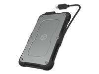 ICYBOX IB-287-C31 IcyBox External enclos