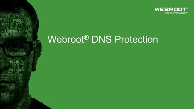 Webroot DNS Protection with GSM Console, 1 year(s), License quantity 10-99 user(s)